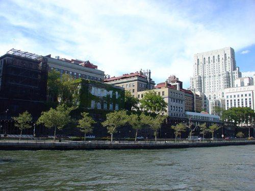 50. Rockefeller University GÇô New York City, New York