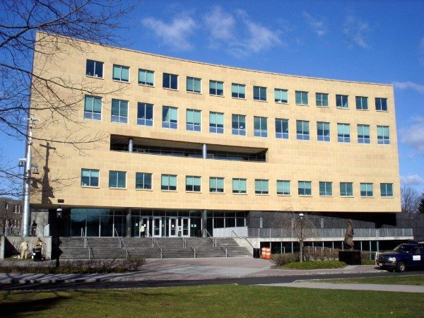 Steton Hall University