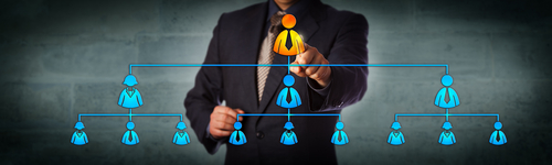 Image of organizational chart for our ranking of organizational leadership jobs